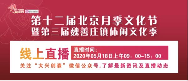 绿美大兴,第十二届北京月季文化节即将开幕