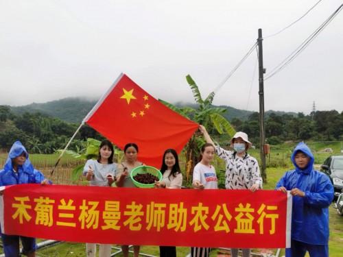 杨曼助农公益直播第一站——疫情下助力杨梅果农