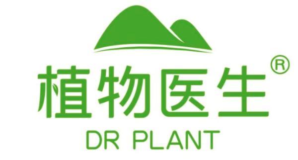 植物医生兰熨斗:守护冻龄的你