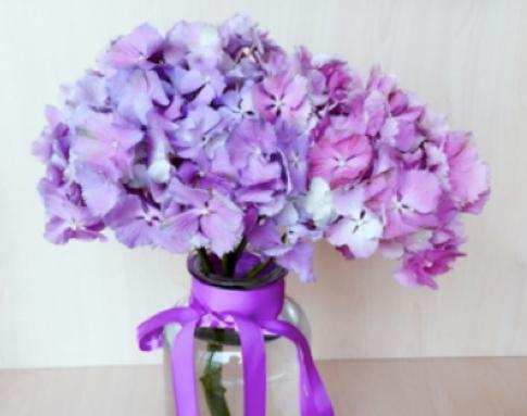 送到家中的自然芳香 花点时间给你幸福体验