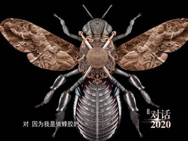 对话2020特别节目,讲述人类与蜜蜂王国的故事