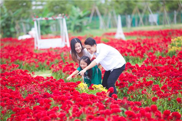 与国同庆,欢度中秋,盈香生态园打卡最燃中国红系列活动正式开启