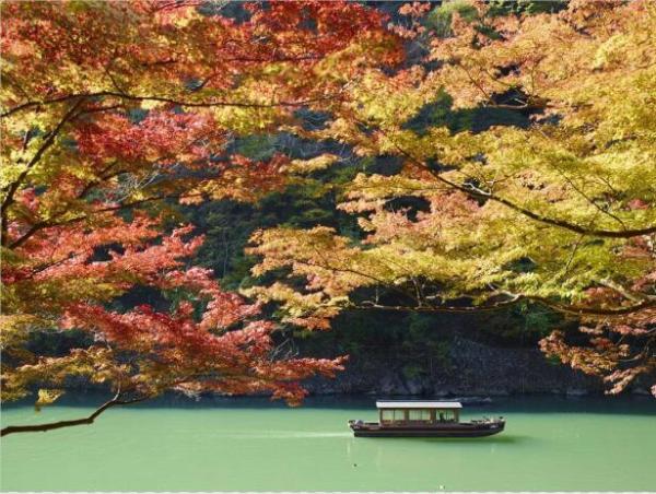"""日本红叶季,开启一场陶醉的秋日""""红叶云狩""""之旅"""