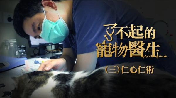 纪录片《了不起的宠物医生》收官,顽皮家族医院、贝克和史东动物医院、安安宠医多品牌参演