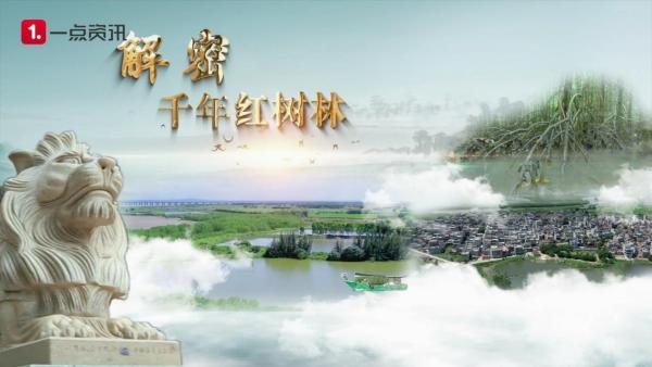 """""""淘宝台湾""""被台当局认定为陆资并受罚"""