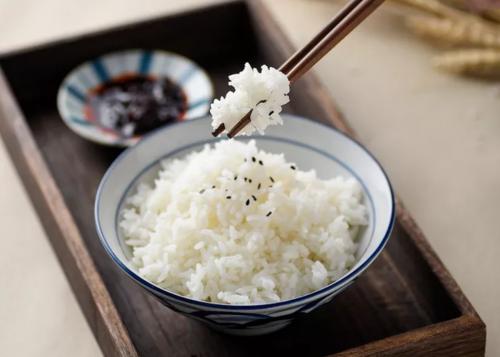 五常产区水稻开镰 2020年新米即将上市