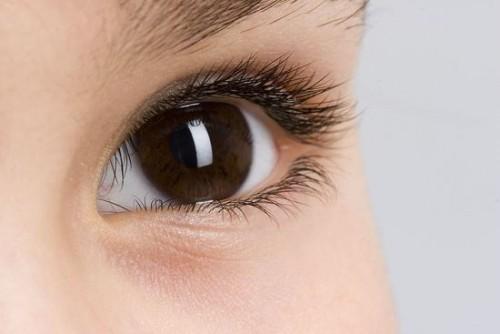为眼周肌肤带来焕变奇迹 植物医生兰熨斗助你无惧岁月流逝