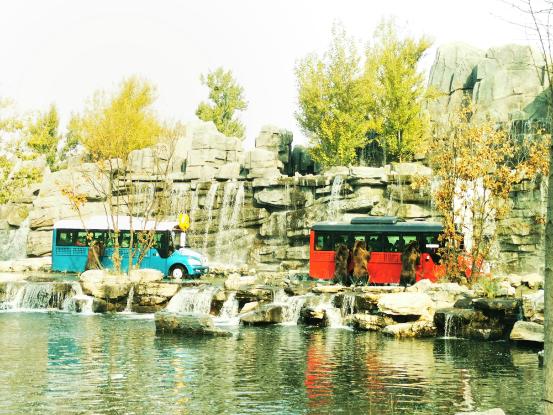 """野生动物园 - 北京野生动物园入选 """"2020首届北京网红打卡地榜单"""""""