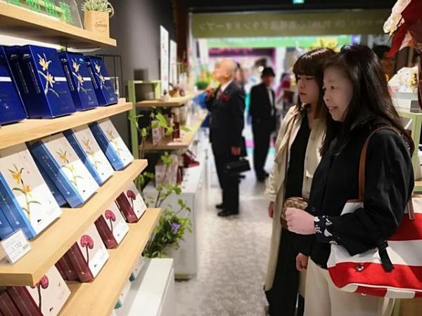 植物医生引领行业单一品牌店发展 深化实体带动未来