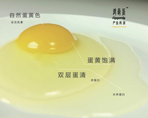 妈妈会选择,宝宝有健康——鸿萌为孩子选择最好最适合的鸡蛋