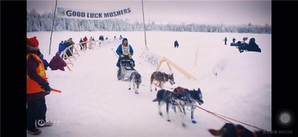 """狗拉雪橇""""世界杯""""打响,《狗拉雪橇北极系列赛》,虎牙独家转播"""