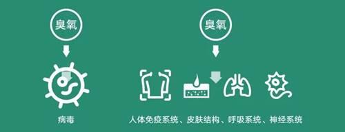 华为要卖空气了?坐在北京也能享受呼伦贝尔的清新