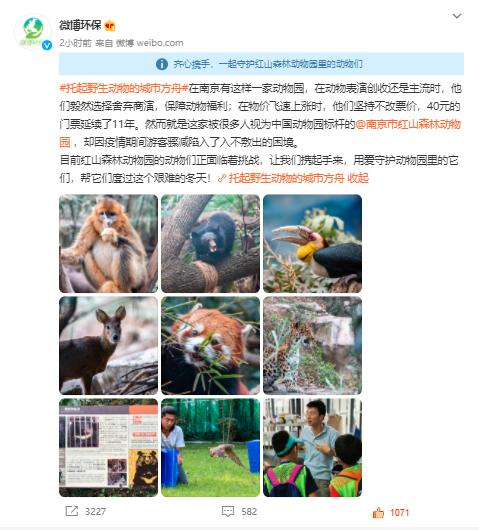知名动物园疫情期间亏损3000万后续:微公益上线动物助养项目