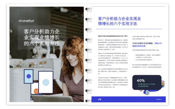 斯图飞腾Stratifyd白皮书:客户体验分析助力业绩增长的六个实用方法