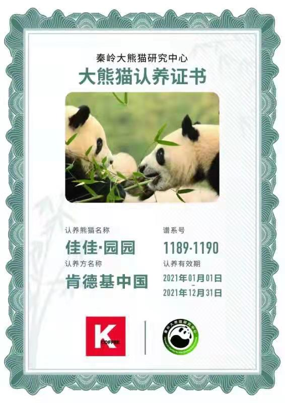 两家大企业认养四只大熊猫 自然和谐共促发展