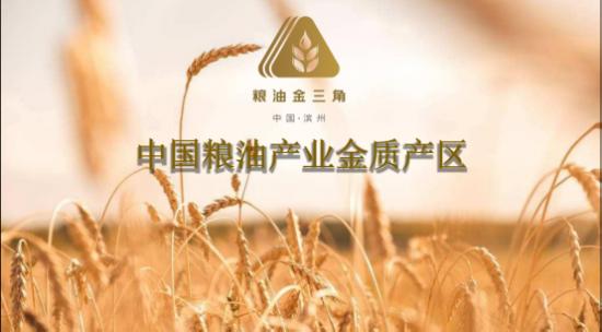 """积极推进""""齐鲁粮油""""品牌建设 助力山东粮企高质发展"""