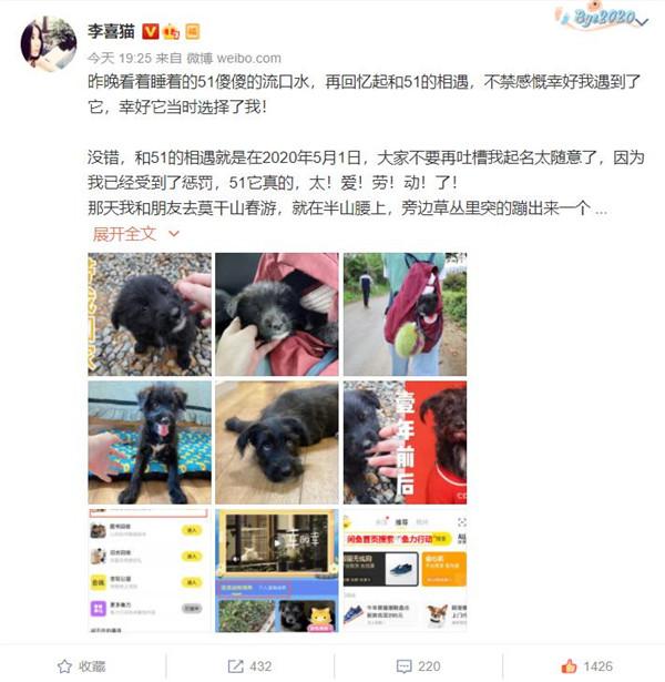 """闲鱼发起""""鱼力行动"""",超20000只猫狗等待领养救助"""