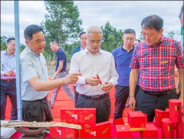 沧州市委书记袁广平考察那达地区神乡种植基地