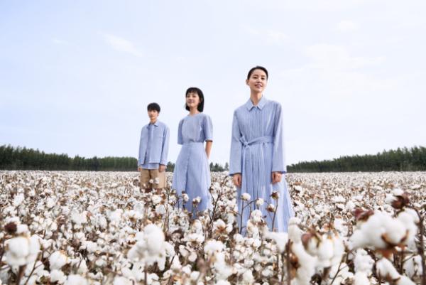 追溯棉花时代的新疆 见证棉花与人的共同成就