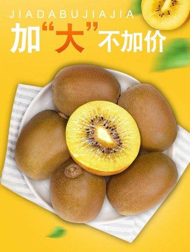 """一箱黄心猕猴桃只需28.9元 低价购食品生鲜就上""""真快乐""""APP"""