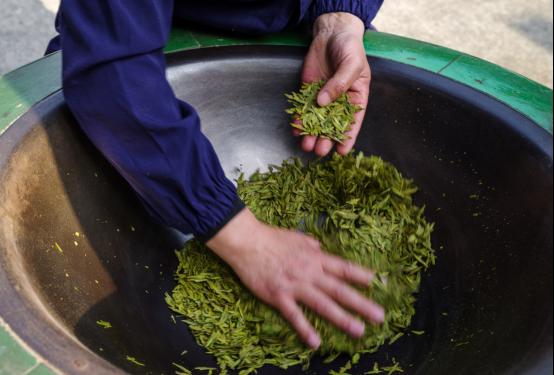 春茶季|穿越地域,多重把关,只为吴裕泰的一份春茶