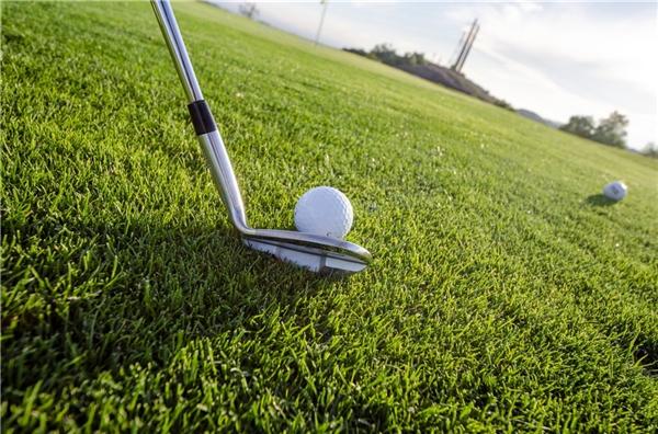 20万人次参与!焦点短视频喊你来免费打高尔夫活动盛大结束