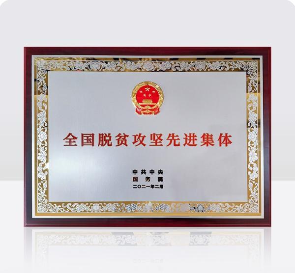 """利用教育阻断贫困的代际传递 Sanhao.com荣获""""全国扶贫先进集体""""称号"""