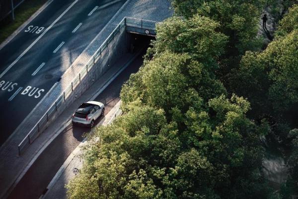 沃尔沃袁小林:汽车的电气化转型是否成功要放眼长期