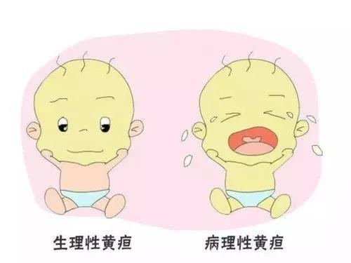"""新手爸妈注意,北京家恩德仁医院这份新生儿黄疸""""护理攻略""""一定要看"""