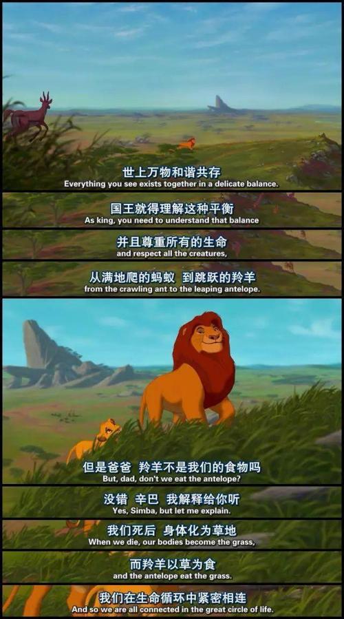 狮子王辛巴草原的故事再次打动了我的心