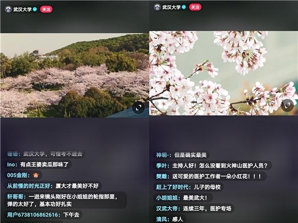 抗疫医护赴约武大赏樱,抖音超1.7亿人次围观