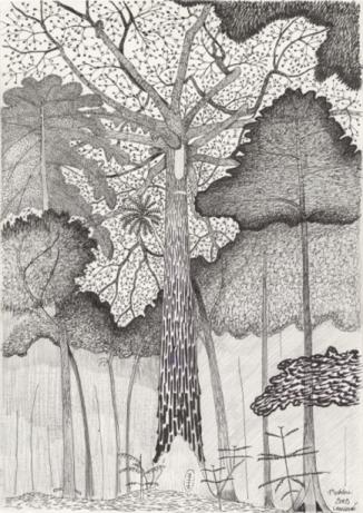 """上海当代艺术博物馆将与卡地亚当代艺术基金会共同推出""""树,树""""展览"""