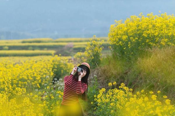 金花有约 又见高淳,2021第十三届中国·高淳国际慢城金花旅游节将于3月13日盛大开幕
