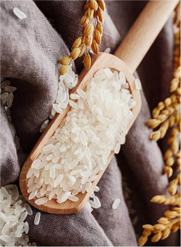 底蕴飘香·品质营养,央视邀您细品吉林大米的味道