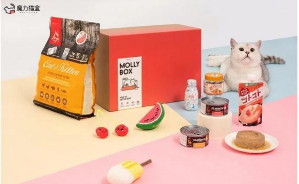 千亿宠物市场蓝海已启,魔力猫盒缔造轻松养宠秘籍