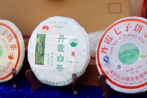 春天的第一杯鲜,来自广东仁化白毛茶