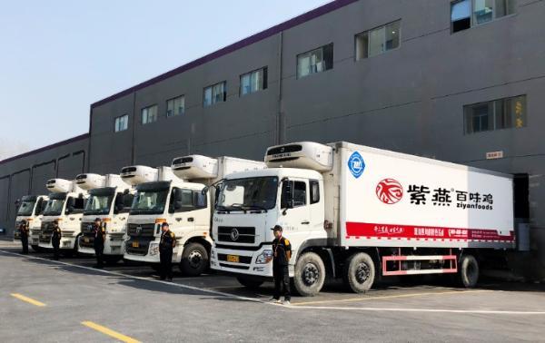 晏子白尾鸡 腾蛟板鸭是新的 它是一个新的国内产品 人民的爱