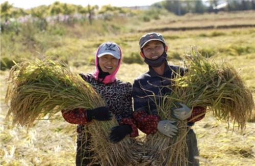 推进一二三产业联动发展 中国三星的产业扶贫之路