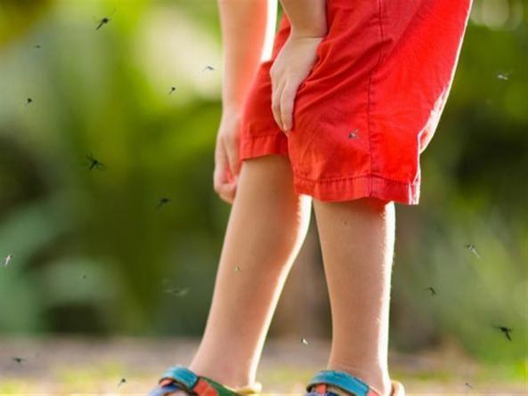 宝宝驱蚊全攻略,教你360度无死角防蚊虫