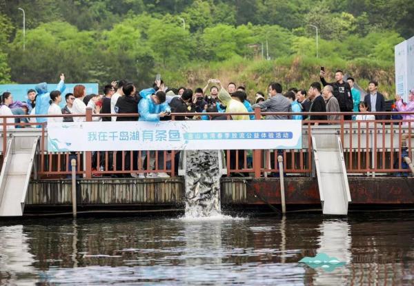 千岛湖金山鱼湾举行春季放流公益体验活动