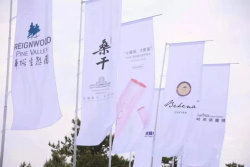 """长城跨界 桑干酒庄携手华彬高尔夫俱乐部会员杯""""问鼎黑TEE"""""""