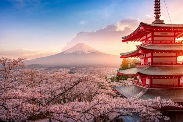 幸福的温度,日本美学里的人间风景