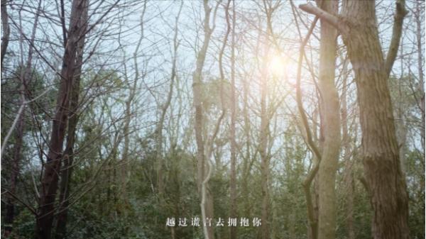 三星S21系列,联合张韶涵&卡斯柏倾情呈现《夜空中最亮的星》