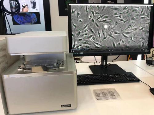 直击细胞生物学学会 尼康助力生命科学