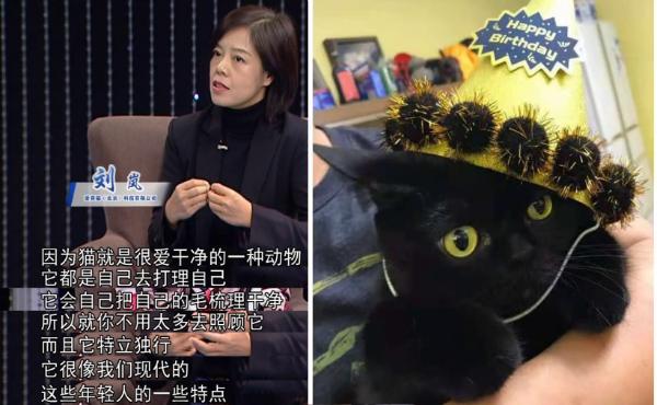 """大国匠心栏目组推荐:""""爱喜猫""""无接触自助洗车进行时"""