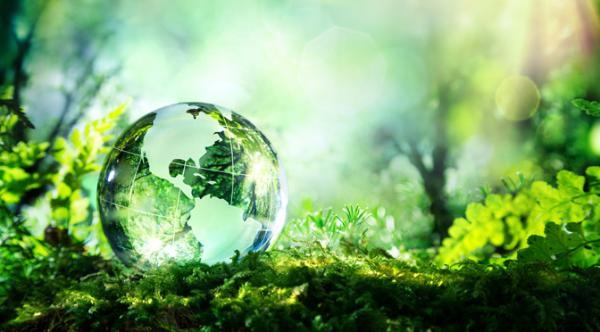 美妆产业的绿色新风,二十多年坚守的持续发展之道