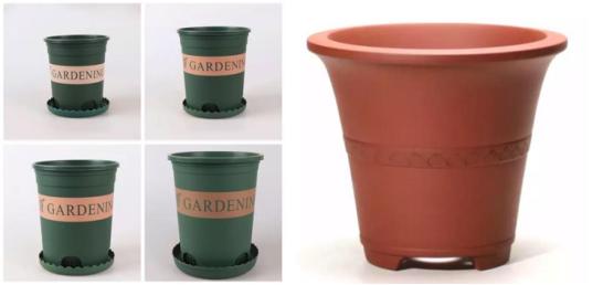 """园艺知识干货+百元以下园艺法宝,成为""""植""""场赢家就是这么简单"""