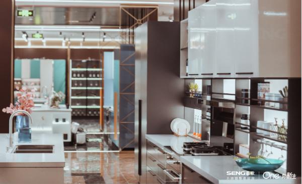 访森歌电器董事长范德忠——崛起的不锈钢整体厨房新商业