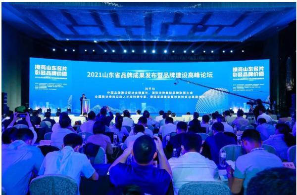 2021山东省重点行业品牌价值榜发布 浪潮、聚好看品牌强度分列行业前二