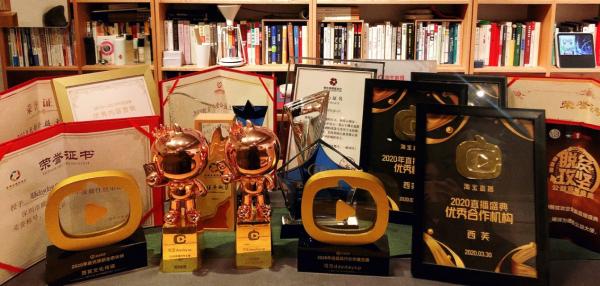淘宝直播盛典:西芙传媒旗下主播可乐daydayup荣获年度最具行业价值主播